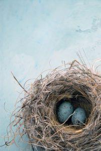 baby pregnancy miscarriage fertility infertility