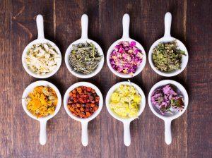 herbs plant medicine standardized extract tincture