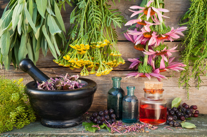 herbal medicine stratford